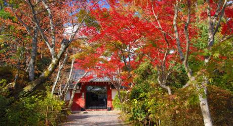 京都 宿坊