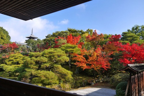 京都の紅葉の名所